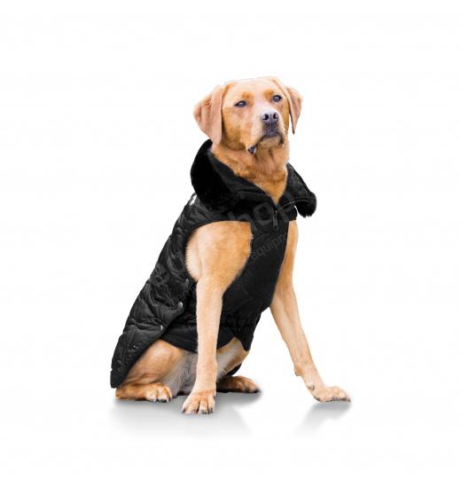 GLOSSY DOG COAT PLATINUM