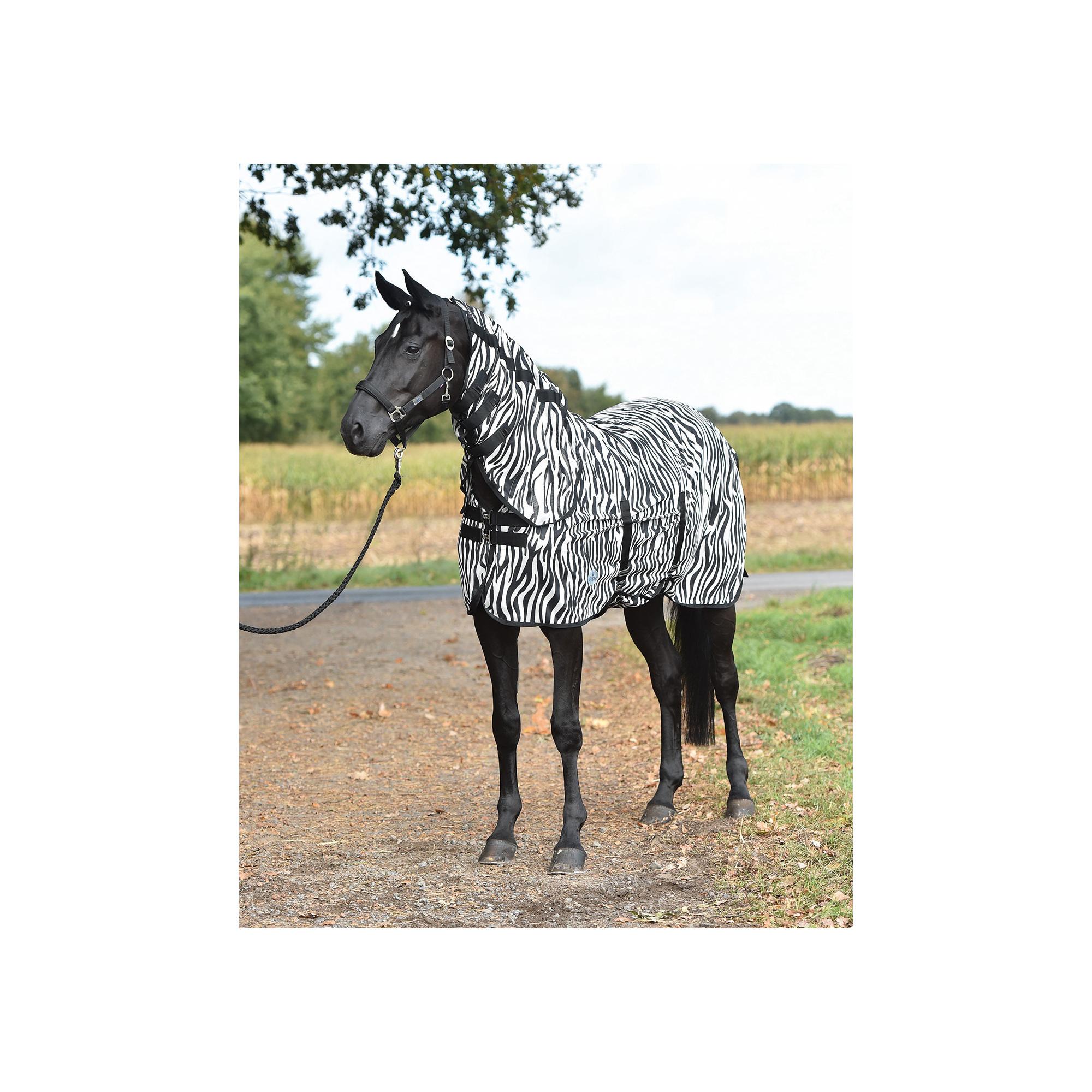 Zebra Pattern Horse Rug: Busse ZEBRA MESH HORSE RUG