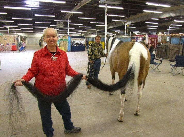 Najdłuższy koński ogon