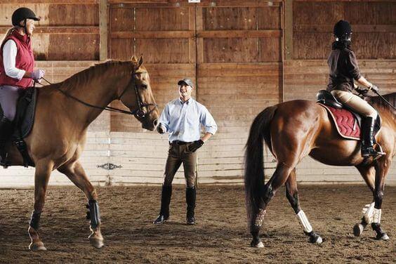 trening jeździecki