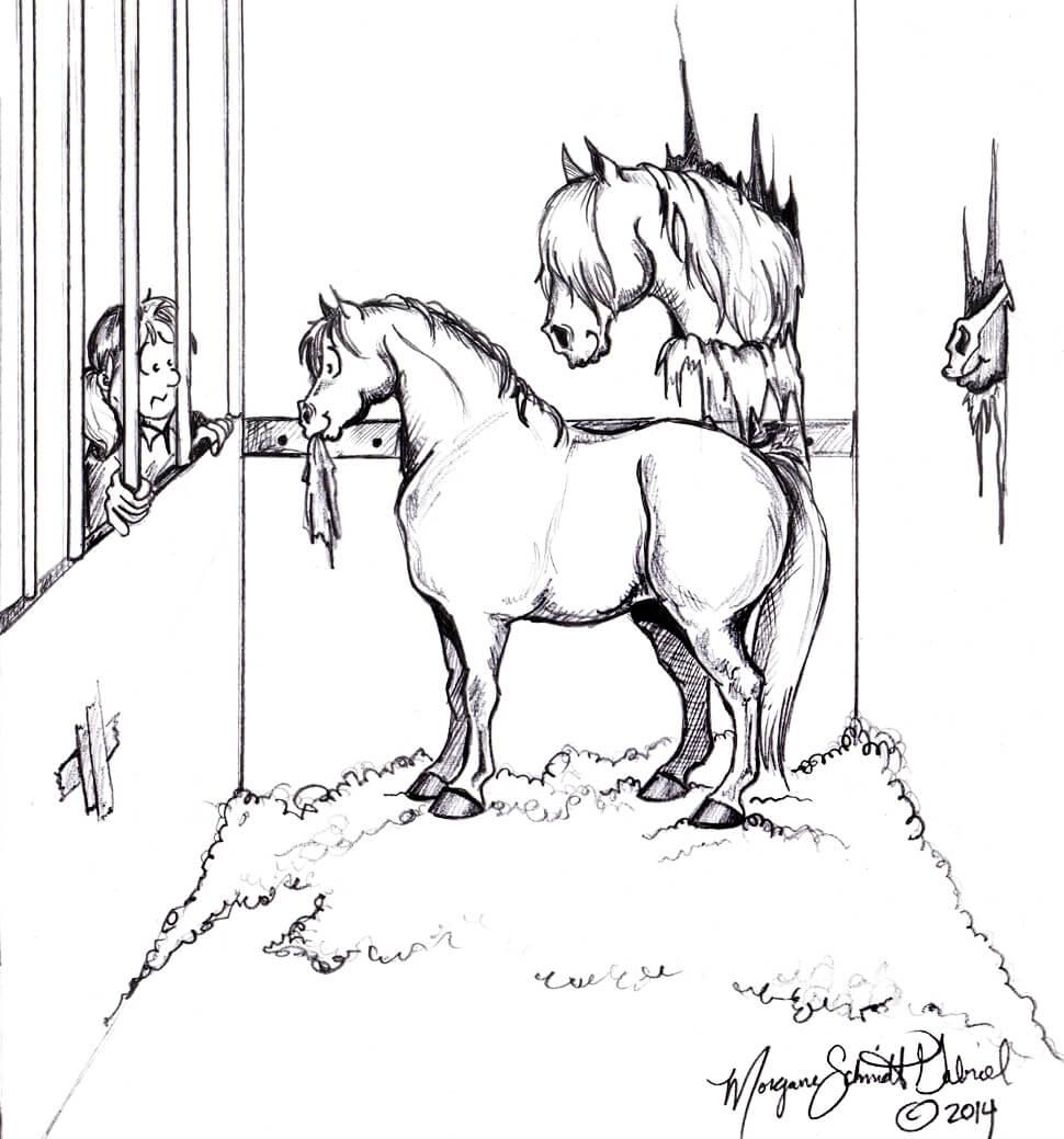 typ konia - społeczniak2