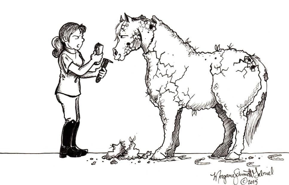 typ konia - szczęśliwy brudasek