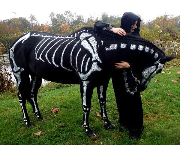 szkielet kostium halloween dla konia