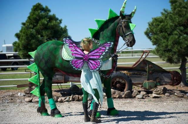 wróżka i smok kostium halloween dla konia