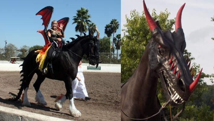 czarownica i smok kostium halloween dla konia