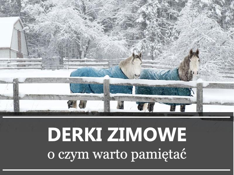 9a1f0780baf4f Derki zimowe - o czym warto pamiętać Sklep jeździecki