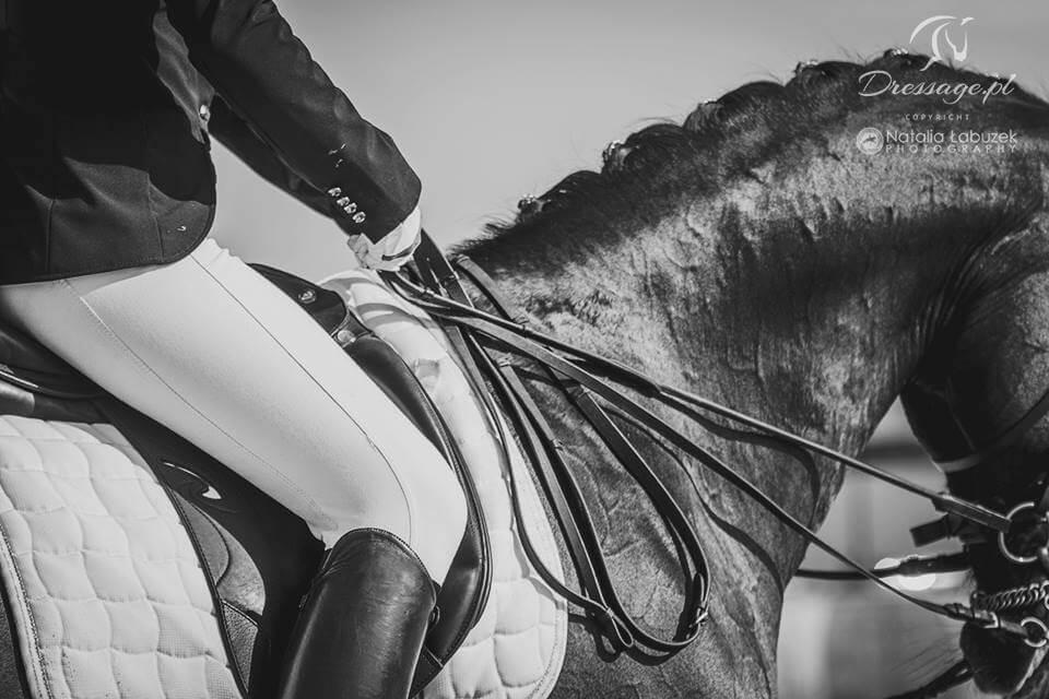 277288ecf21c2 Jak dopasować końskie ogłowie Sklep jeździecki