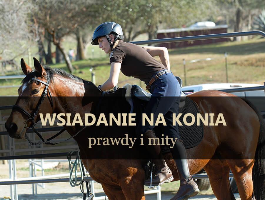 Wsiadanie na konia - prawdy i mity