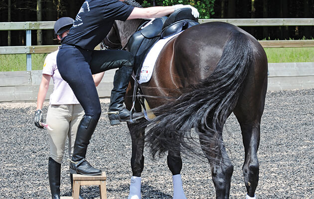 mounting from horse's left side