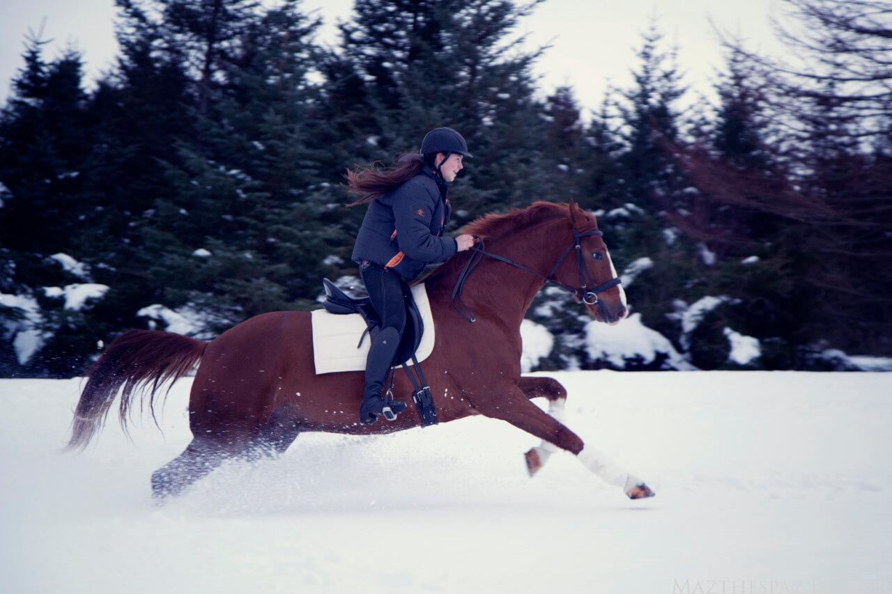 jeździectwo zimą