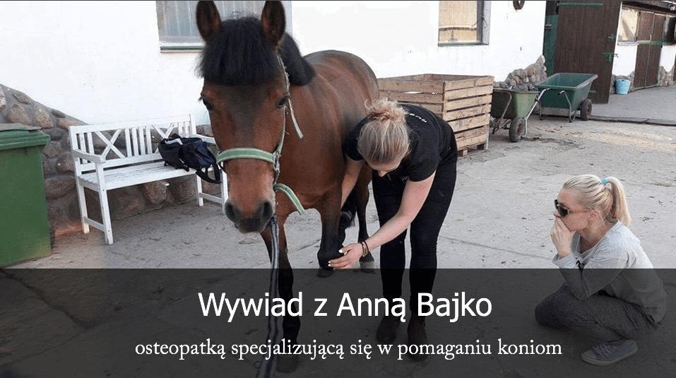 Anna Bajko