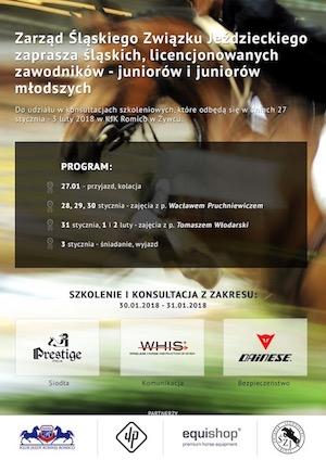 Plakat szkolenie w Romico 2