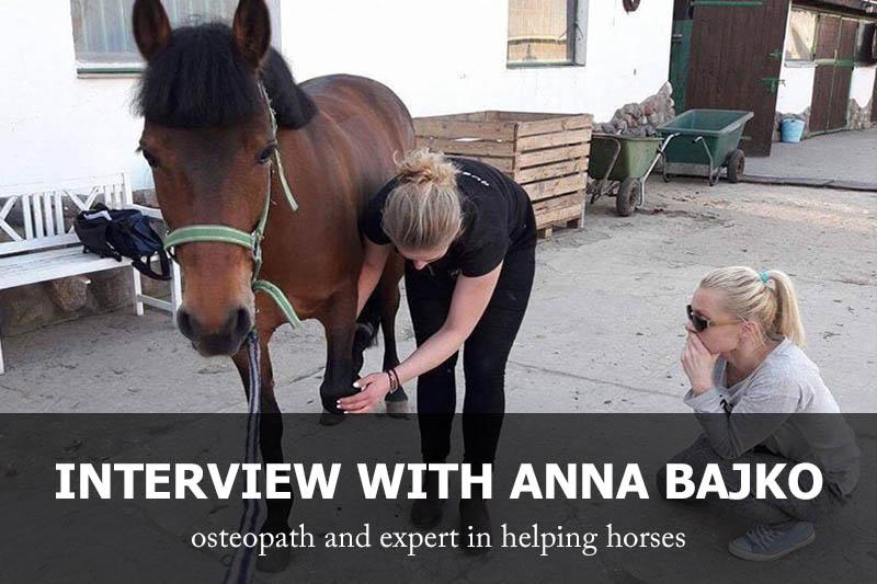 Interview with Anna Bajko