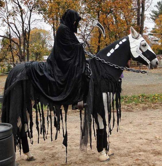 Koń i jeździec przebrani za śmierć na halloween