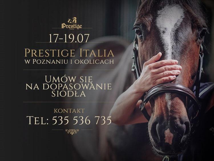 Dopasowanie siodeł Prestige w Poznaniu i województwie wielkopolskim