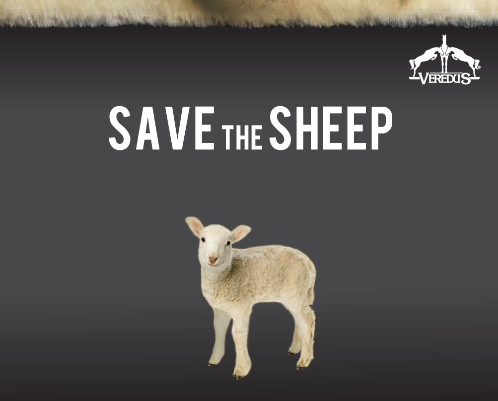 Save The Sheep logo