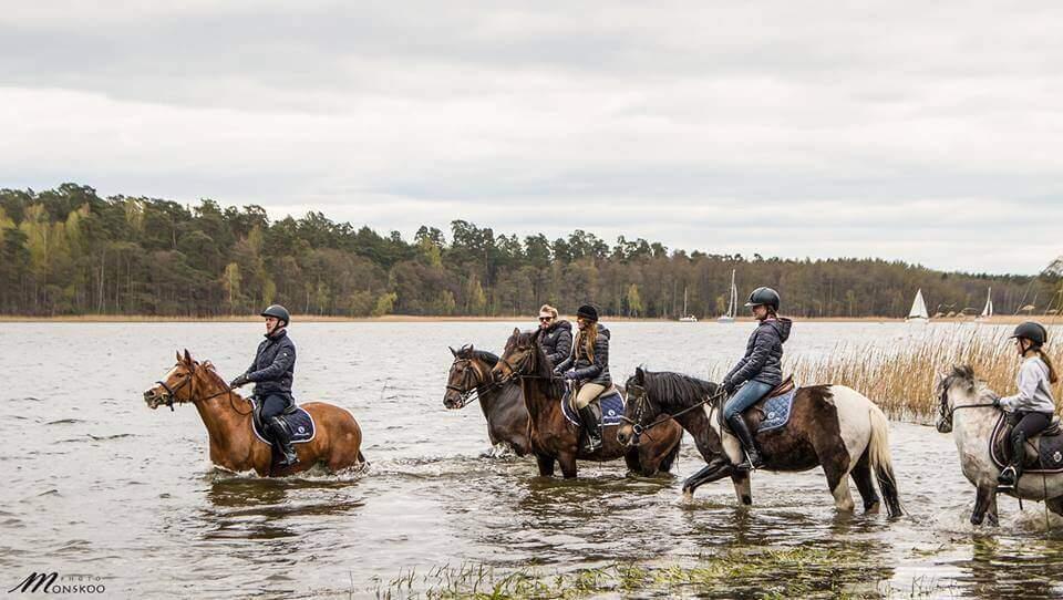Pławienie koni podczas majówkowego pikniku w Stadninie Koni Ferenstein