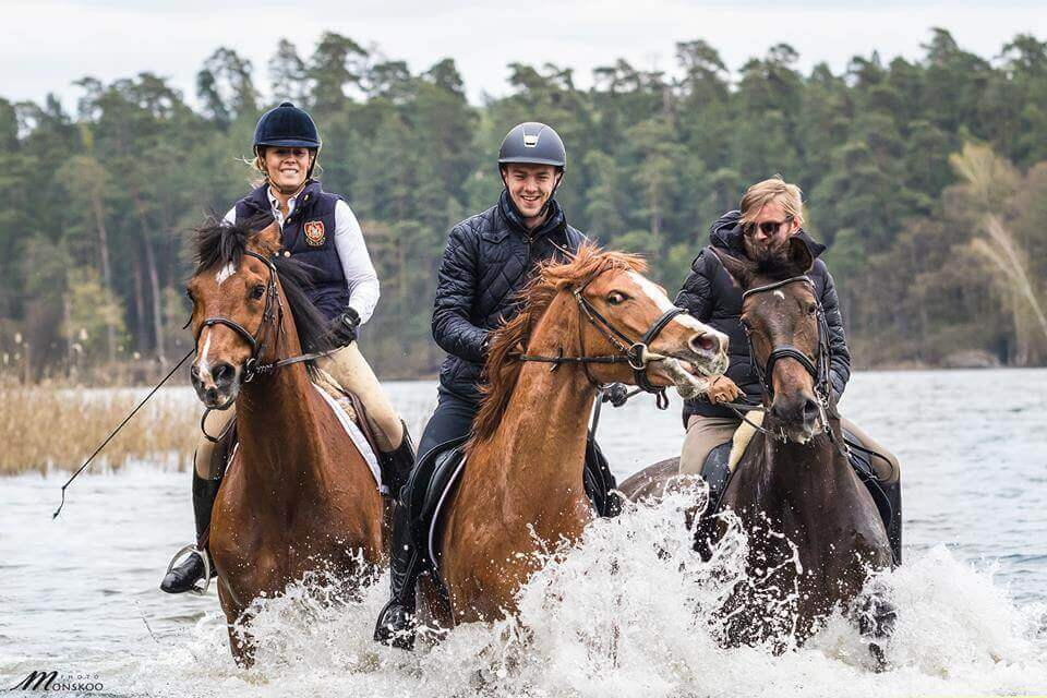 Konie w jeziorze Bełda