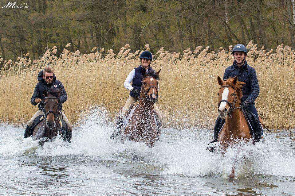 Pławienie koni z Karoliną Ferenstein-Kraśko