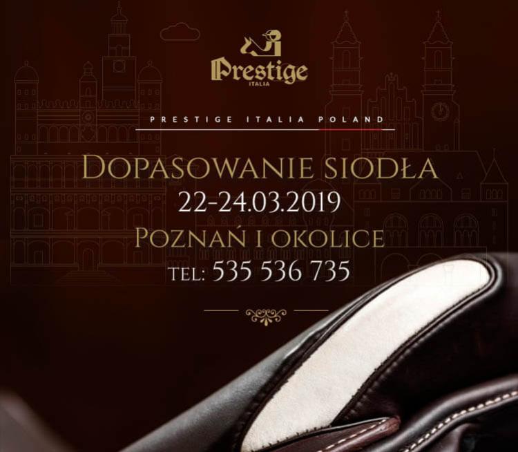 Dopasowanie siodeł Prestige w Poznaniu i okolicach