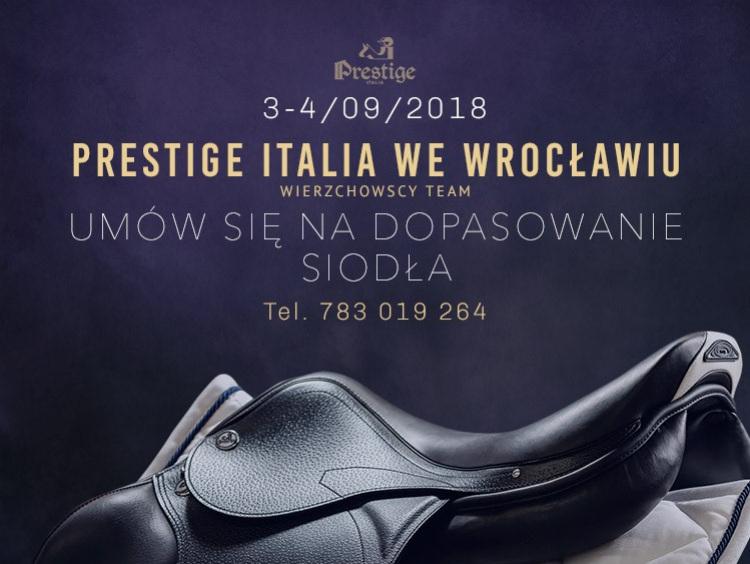 Pasowanie siodeł w województwie dolnośląskim