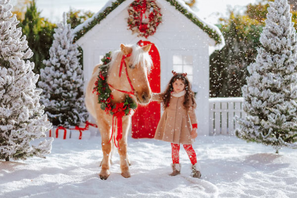 Top 15 Xmas gifts for children horse rider