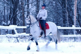 Winter problems - overheating and dehydration of the horse