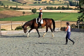 First horseback riding lessons - how to encourage and build a solid foundation