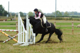 Show jumping - what to do with a horse who... part 2